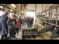 Výzkum, reprodukce hospodářských zvířat Praha, genetika, šlechtění, biotechnologie, etologie