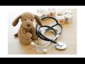 Preventivní prohlídky, prevence, poradna Znojmo