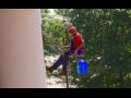Výškové práce na budovách, čištění okapů, rizikové kácení