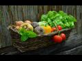 Ovoce a zelenina tuzemská i exotická, prodej Liberec
