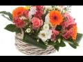 Komplexní květinový servis, doručování květin Ústí nad Labem