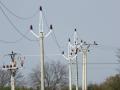 Rozvody telekomunikačních sítí, silnoproudu i zabezpečovacích systémů