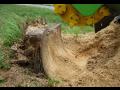 Likvidace, frézování pařezů - sešrotování dřeva po kácení stromů pařezovou frézou