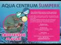 Těhotenské plavání, plavání pro těhotné Šumperk