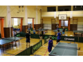 Stolní tenis, ping pong