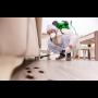 Dezinsekce - účinná likvidace, hubení štěnic dle norem HACCP