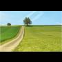 Geodetické služby při komplexních pozemkových úpravách Opava, podrobné měření polohopisu, revize