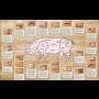 Velkoobchodní i maloobchodní prodej vepřového a hovězího masa