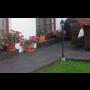 Terasové desky a dlažby Lázně Bohdaneč, podlaha na balkonech, kolem bazénů, restauracích, molech