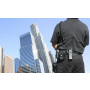Bezpečnostní služby, zajištění bezpečnosti na veřejných akcích