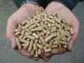 Briquettes, small pellets, pellet pressing, granulating line, Prague, Brno, Plzen