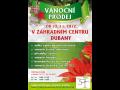 Vánoční trhy Pardubice Prodej vánočních stromků Pardubice Chrudim
