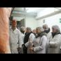 Výzkumný ústav živočišné výroby – odborná instituce zabíhající se chovem hospodářských zvířat