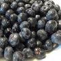 Mražené lesní plody Bruntál, ostružiny, borůvky, maliny, lesní jahoda, arónie, černý rybíz, brusinky