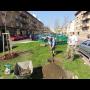 Zahradnické práce ve městech, sečení trávy, výsadba zeleně