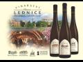 Vinné sklepy Lednice, vinařství