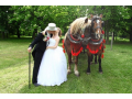 Svatebn� fotograf Pardubice - Foto Ra�ka - fotografov�n� svateb