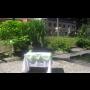 Wellness hotel Filipov okres Hodonín, rekreační středisko na jižní Moravě, pořádání svateb
