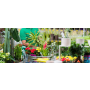 Potřeby pro zahradníky – hnojiva, substráty i květináče
