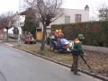 Frézování pařezů prořez výsadby keřů kácení stromů Pardubice
