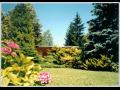 Návrhy, realizace zahrad, Brno, jižní Morava