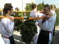 Vinařství Valtice, Lednice, víno Valtice, víno z Moravy