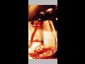 Vinn� sklep, v�roba v�na, vina�stv� Velk� B�lovice