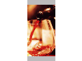 Vinný sklep, výroba vína, vinařství Velké Bílovice