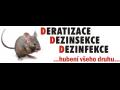 Deratizace Jičín Náchod Trutnov Hořice Třebechovice