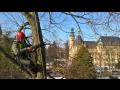 Sekání trávy údržba zeleně rizikové kácení stromů Liberec Praha.