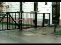 Praha výroba brány ploty