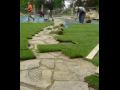 Výstavba koupací jezírka, kobercové trávníky Zlínský kraj