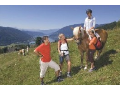Aktivní dovolená, dovolená s dětmi Mölltalský ledovec Zlín