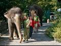 Chovatele v zoo �st� nad Labem