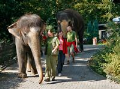 Chovatele v zoo Ústí nad Labem