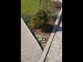 Výroba betonové obrubníky, prodej zahradní palisády, palisádové obrubníky