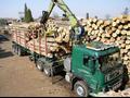 Výroba návěsů a přívěsů na převoz dřeva – TOM service s.r.o.