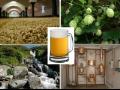 Technologické a poradenské služby pivovarům a sladovnám
