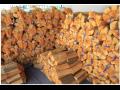Brennholz, Holzverkauf, Sonderaktionen, PRODEX, spol. s r.o. die Tschechische Republik