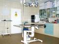 Veterinární pohotovost, klinika, RTG, SONO, EKG Kroměříž