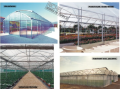 Velkokapacitní skleníky Richel včetně montáže