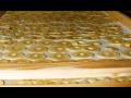 Teplovzdušná sušárna, sušení potravin, sušení pro výrobu krmiv Zlín