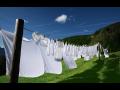 Praní žehlení košil košile oděvů prádla prádelna čištění oděvů čistírna Liberec Jablonec.