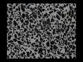 Podlahy z lit�ho terazza