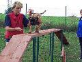 Hotel pro psy výcvik psů Praha západ