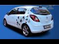 Autopůjčovna - osobní i užitkové vozy s povinným i havarijním pojištěním