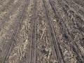 Pásové zpracování půdy, zpracování půdy, bioplynová stanice, kukuřice, Orthman, GAEC, eroze, širokořádkové, bps, protierozní