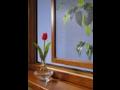 Montáž výplní stavebních otvorů, rekonstrukce domů, zateplování, plastová okna, dveře Ostrava