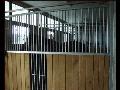 Vnitřní, venkovní boxy pro koně, kotce pro psy, Vsetín, Valašské Meziříčí, Zlínský kraj