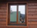 Dřevěné okna, interiérové dveře Vsetín, Nový Jičín, Frenštát, Rožnov, Kroměříž, Holešov
